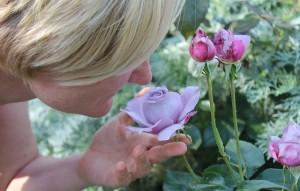 Smelling_Rose